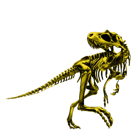 Artistic design of a dinosaur skeleton Tyrannosaurus, painted a picture of the bone is yellow , drawing, sketch, vector Illustration