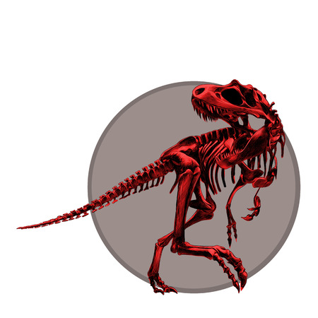 Artistic design of a dinosaur skeleton Tyrannosaurus, painted a picture red bone , with the grey circle, drawing, sketch, vector