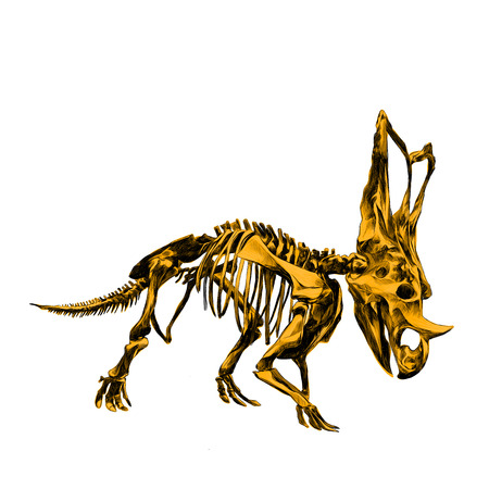 the skeleton of the dinosaur Triceratops, colour the picture yellow bone, sketch vector