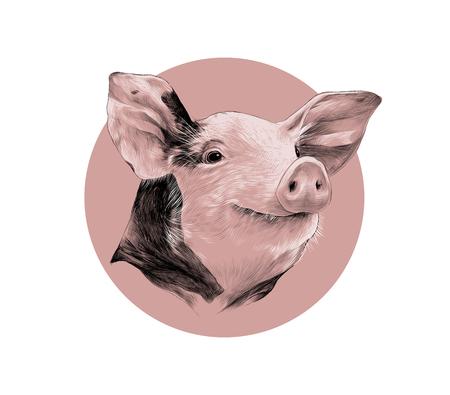 El diseño creativo de una cabeza de color rosa de cerdo manchado, dibujo negro gráficos vectoriales y el patrón de blanco sobre un fondo de círculo rosado Ilustración de vector