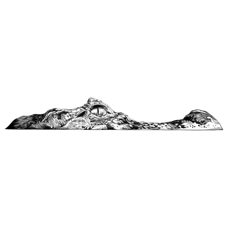 crocodile peeking out of the water and visible part of the muzzle, sketch vector graphics black and white drawing