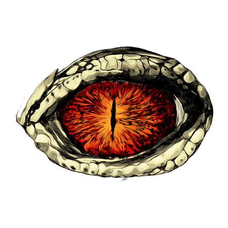 eye of a crocodile or reptile closeup, sketch vector graphics colored drawing red eyes
