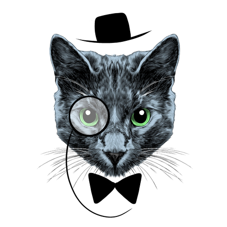 Cat breed Russian blue with his glasses, black hat and a butterfly face sketch vector color drawing