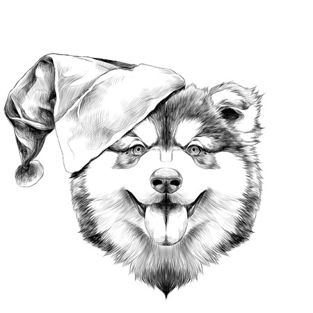 Dog breed Alaskan Malamute puppy with his tongue hanging out, head in a Santa hat on the side symmetry looks right sketch vector graphics black and white drawing
