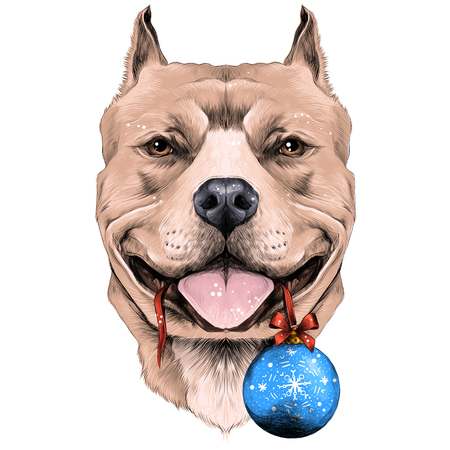 dog breeds the American pit bull Terrier brown color head with new years ball in the teeth sketch vector graphics color picture Illustration