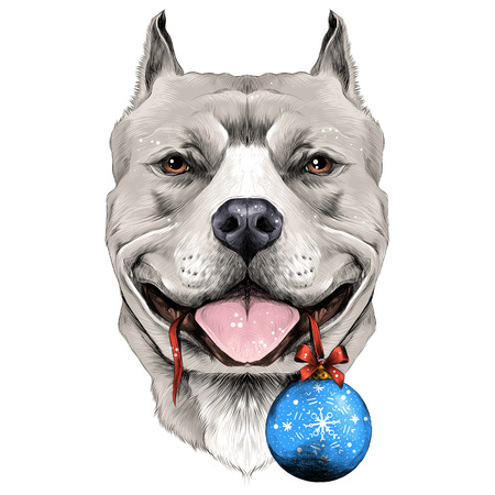 dog breeds the American pit bull Terrier white color head on new years eve ball in the teeth sketch vector graphics color picture Illusztráció