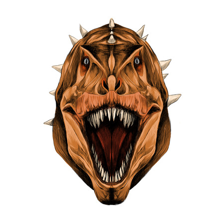 the dinosaur head is symmetrical looks right with an open mouth, orange skin color, sketch vector graphics color picture