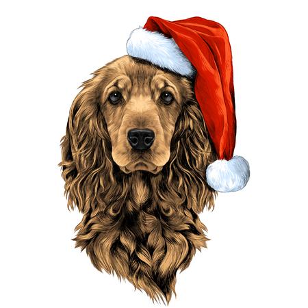 dog breed Cocker Spaniel face in a Santa hat, sketch vector graphics color picture Иллюстрация
