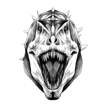 The dinosaur head is symmetrical looks right with open mouth, skin green color, sketch vector graphics black and white drawing.