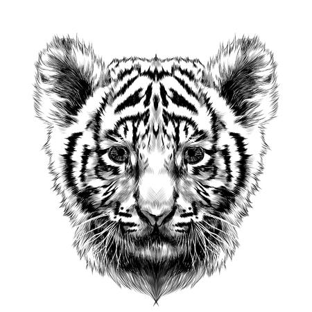 gráfico de dibujo de cabeza de cachorro de tigre dibujo en blanco y negro de vectores