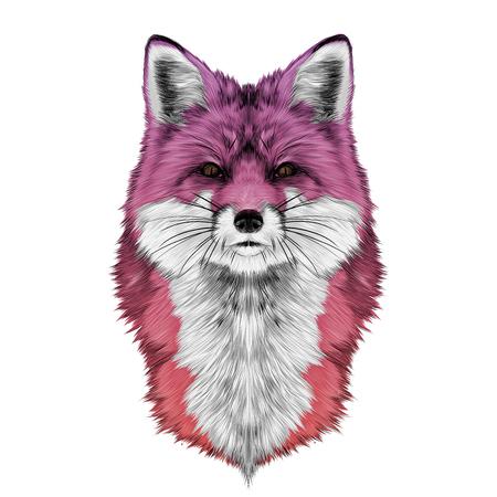 여우 머리 앞에서 직접보고 스케치 벡터 그래픽 색 그라데이션 분홍색 빨간색 일러스트