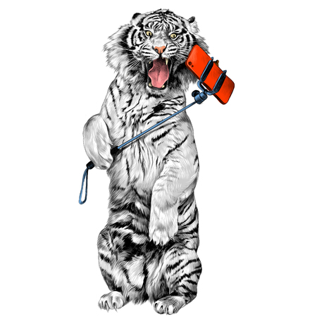 white tiger standing on hind legs with open mouth and makes a selfie sketch vector graphics color picture Stock Vector - 81227931