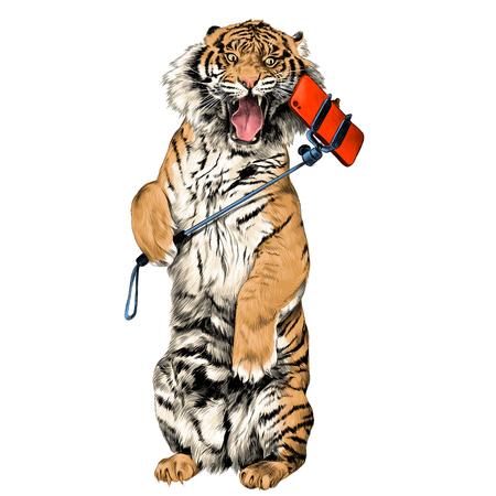 La tigre si leva in piedi sulle zampe posteriori con la bocca aperta e fa un'immagine di colore di grafica vettoriale di schizzo di selfie Archivio Fotografico - 81227948