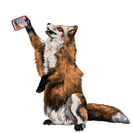 Ein Fuchs auf seinen Hinterbeinen wird fotografiert, ein selfie am Telefon, Skizzevektorgraphiken Farbbild Standard-Bild - 82234789