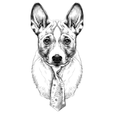 Dog breed Basenji head with a Christmas tie sketch vector graphics black and white drawing Illustration