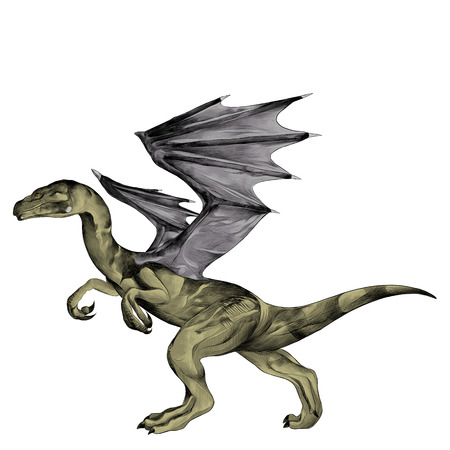 the dragon goes on its hind legs sketch vector graphics color picture