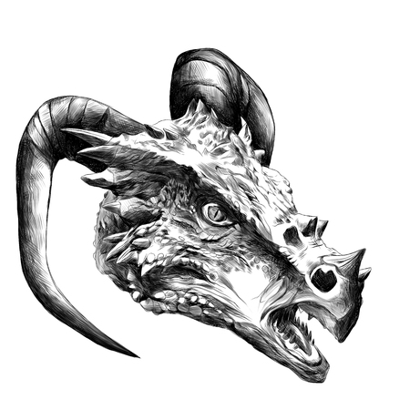 dragon head with horns sketch vector graphics black and white drawing
