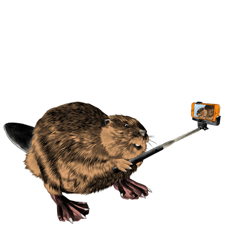 beaver photographed with selfie stick for phone sketch vector graphics color picture