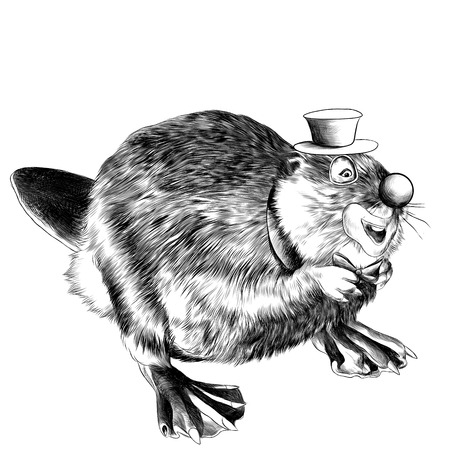 beaver stands on its hind legs the clown in the hat sketch vector graphics black and white drawing Illustration