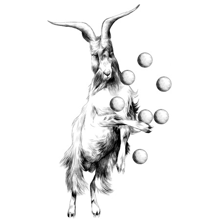 sheep is on its hind legs in a circus and juggles with balls, sketch vector graphics black and white drawing