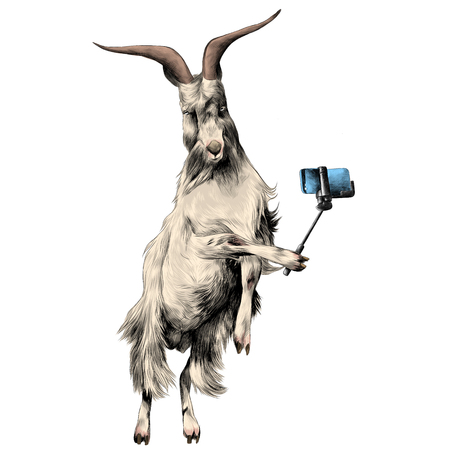 sheep in full growth stands on his hind legs in the jump dance and posing for photos, being photographed with a monopod on the phone, takes selfie, sketch vector graphics color picture