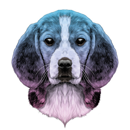 dog head breed Beagle sketch vector graphics color pattern gradient from pink to blue