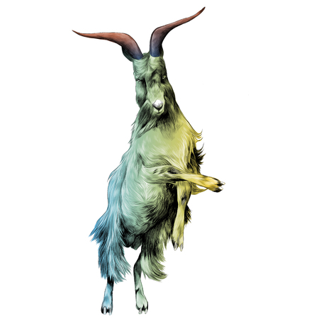 sheep in full growth stands on his hind legs in the jump dance, sketch vector graphics color drawing of a colored gradient from green to yellow