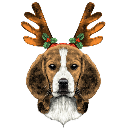 dog head breed the Beagle on the head Christmas headband with horns deer sketch vector graphics color picture Illustration
