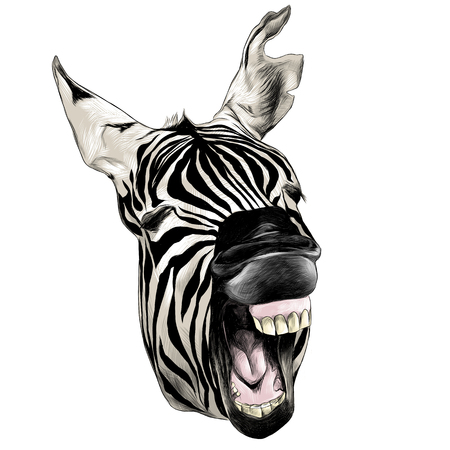 Zebra head contorts face.