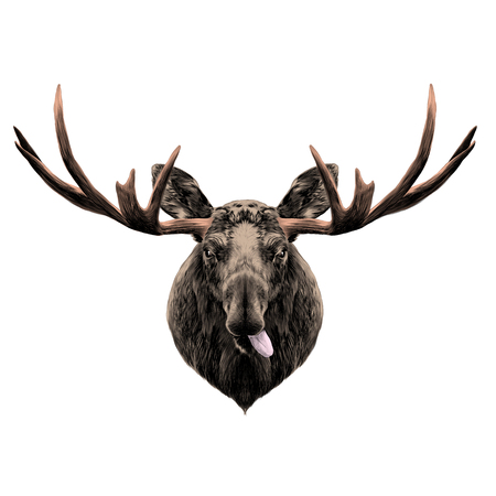 deer head funny with the language sketch vector graphics color