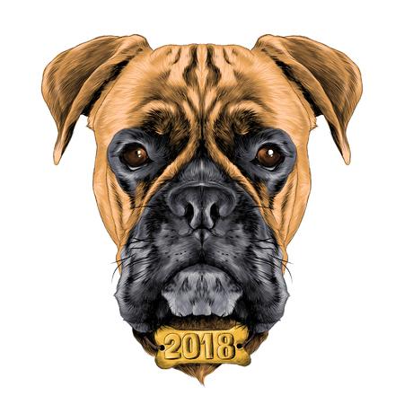 犬種ボクサー犬の首輪 c ベクトルの頭スケッチ色の襟の骨で新しい年を描くグラフィック