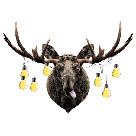 A deer head colored sketch vector graphics