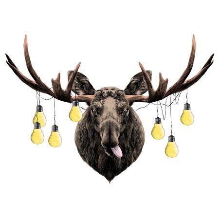 A deer head colored sketch vector graphics