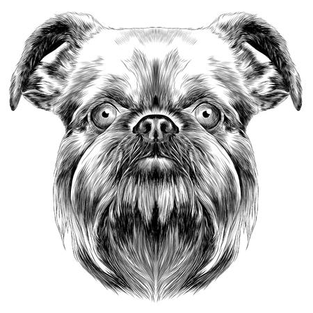 犬の品種はブリュッセル ・ グリフォン ベクトル グラフィックスは白黒をスケッチします。