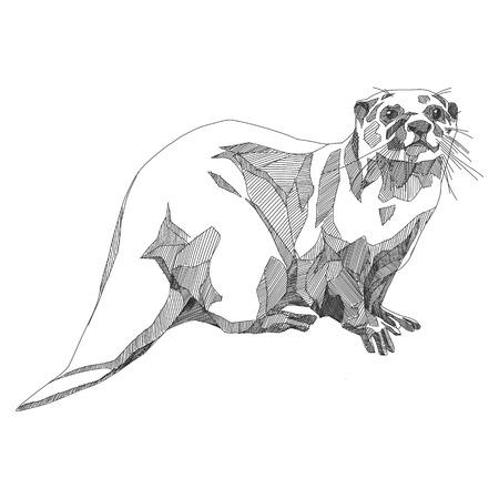 grafica vettoriale di otter sketch in bianco e nero monocromatico Vettoriali