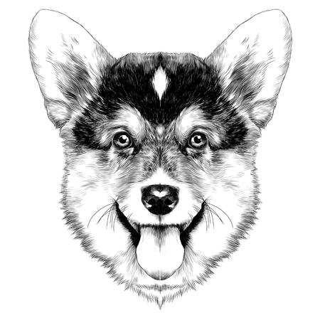 犬種コーギー スケッチ ベクトル グラフィック白黒クリスマス バンプ  イラスト・ベクター素材