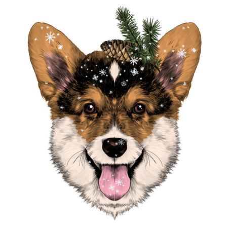 개 품종 웨일스 어 Corgi 스케치 벡터 그래픽 색상 크리스마스 범프