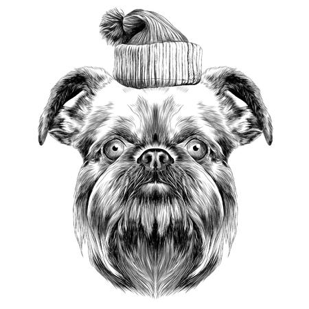 犬の品種はブリュッセル ・ グリフォン ベクトル グラフィックス スケッチ新年のキャップとモノクロ