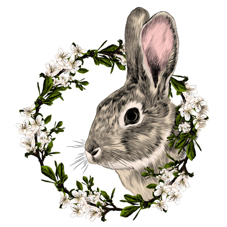 Rabbit in a frame of the tree sketch graphic illustration.