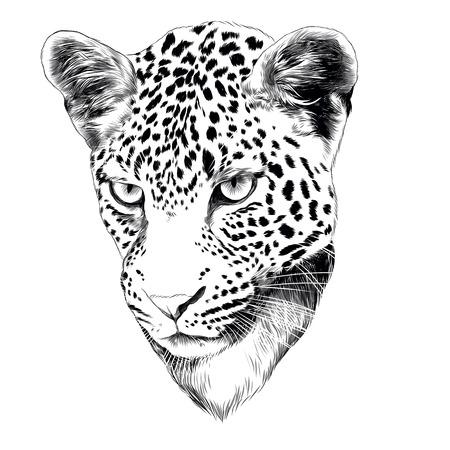 ヒョウの頭の描画スケッチスケッチグラフィックデザイン。