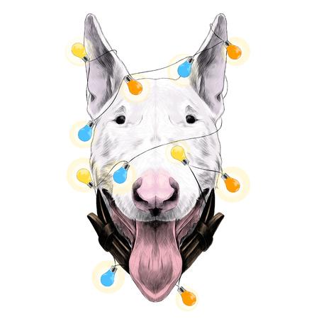 Bull Terrier sketch with lights garland design.  イラスト・ベクター素材