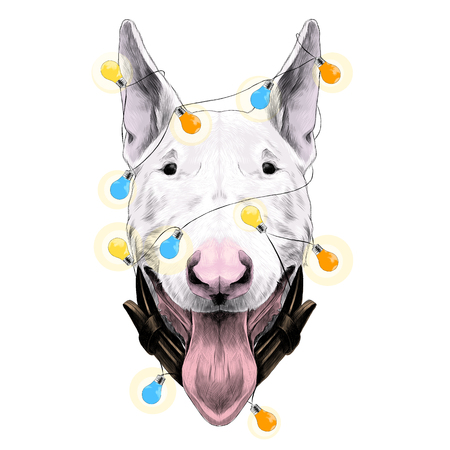 Bull Terrier sketch with lights garland design. Illustration