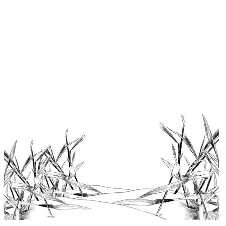 Grass sketch graphic design.