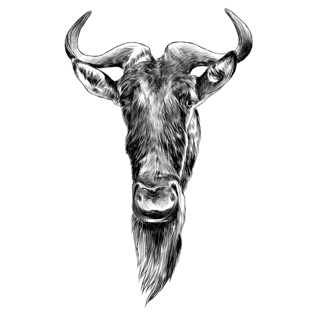Wildebeest head sketch graphic design.