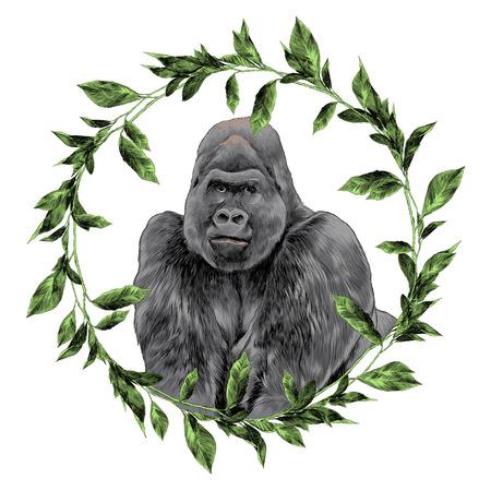 Gorilla in het frame schets grafisch ontwerp.