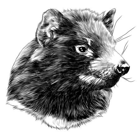 Tasmaanse duivel schets grafisch ontwerp.