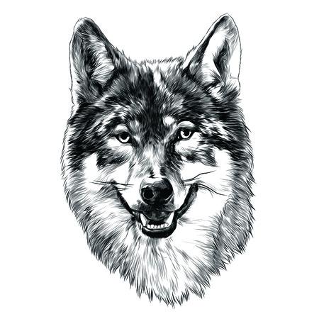 Wolf hoofd schets grafisch ontwerp.
