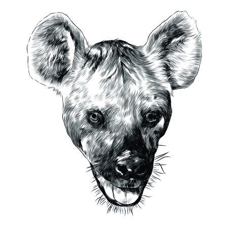 Hyena head sketch graphic design.