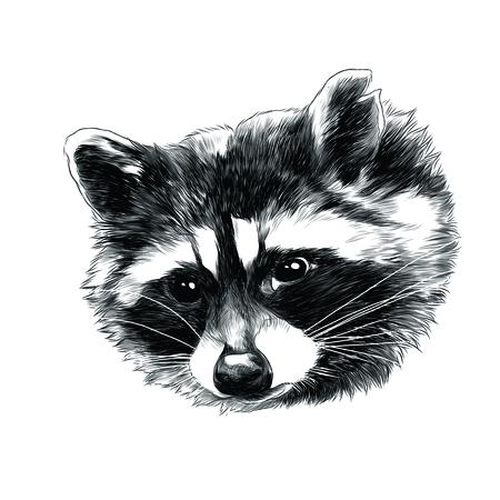 Wasbeer hoofd schets grafisch ontwerp.
