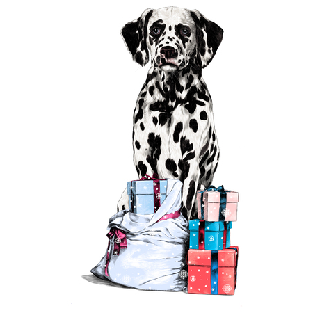 Dalmatians with gift sketch. Vector graphics, color picture.